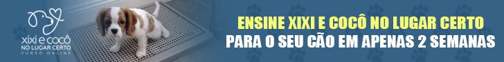 wordpet_meu_cao_companheiro_728x90-r01